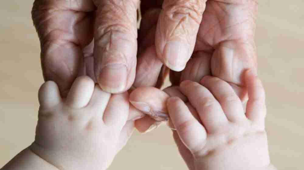 Os avós são responsáveis pela pensão alimentícia?